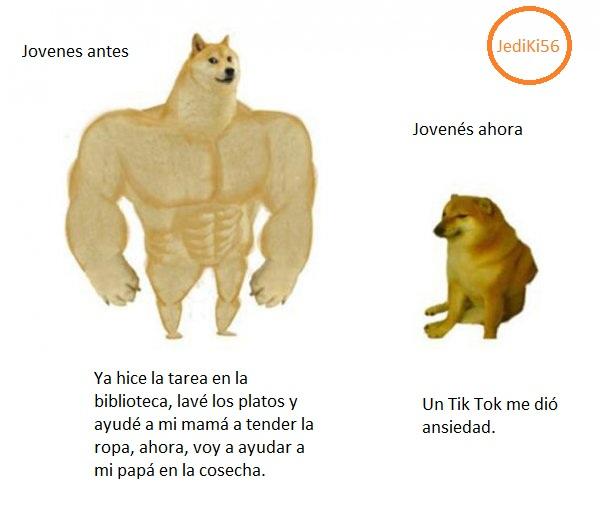 Chistes Con El Perro Grande Y Fuerte Espanol Busqueda De Google Memes Divertidos Memes Perrones Perros Graciosos