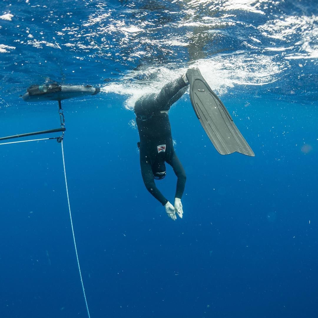 Here You Can See A Student Starting A Personal Best Deep Dive With An Efficient Entry Your Entry Is One Of The Diving Underwater Photography Spearfishing