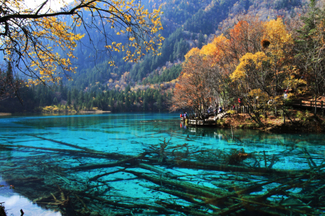 IsJiuzhaigou National Park Lake the most beautiful in the world, or do you know of even more beautiful lakes you would like to share with us? Description from indulgd.com. I searched for this on bing.com/images