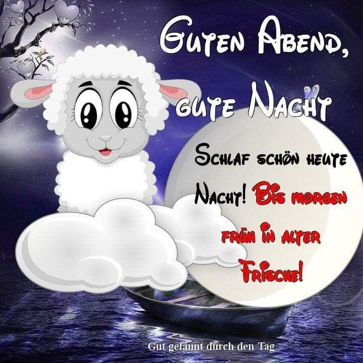Bildergebnis Fur Gute Nacht Bilder Lustig In 2020 Gute Nacht Gute Nacht Lustig