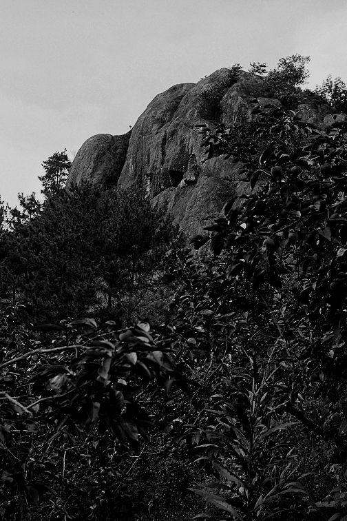 가벼운 사진한장... :: 봉하마을과... 미제레레...