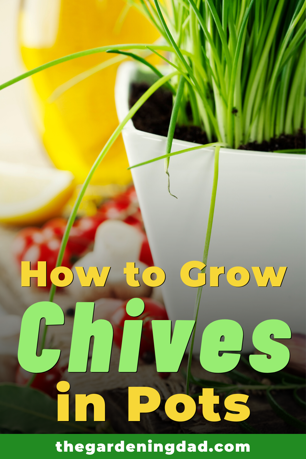 10 Proven Tips How To Grow Chives The Gardening Dad Growing Chives Chives Plant Growing Herbs