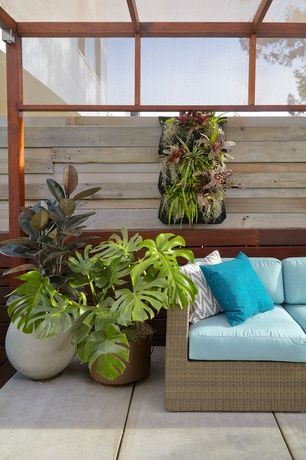 Contemporary Patio With OrlandiStatuary Relm Sphere Vessel Round Planter,  Skylight, Bright Green Living Wall