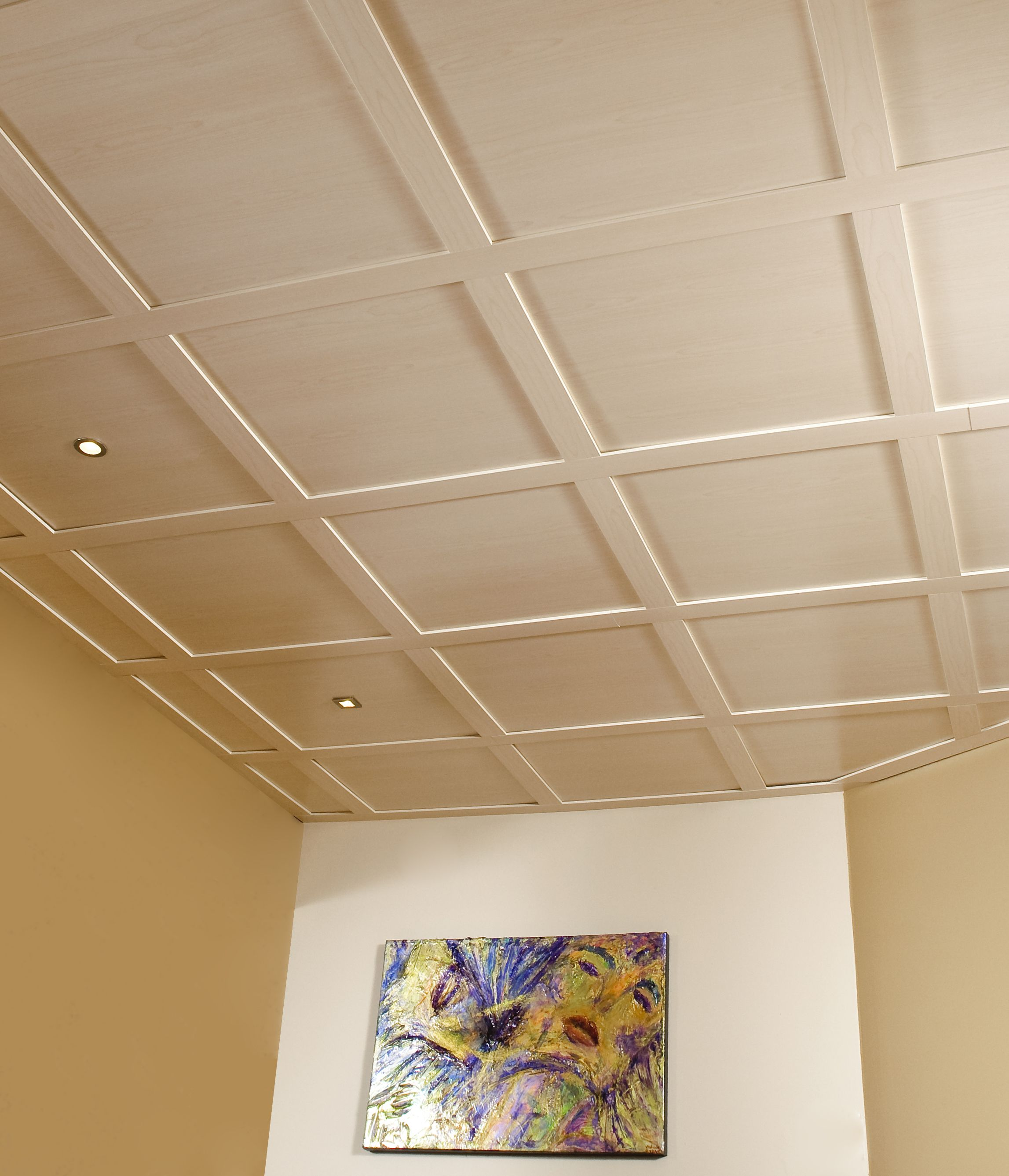 Plafond suspendu embassy rable plafond embassy for Plafond a caisson suspendu