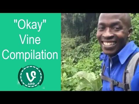 cool okay vine compilation best trending vines 2015 vineadd