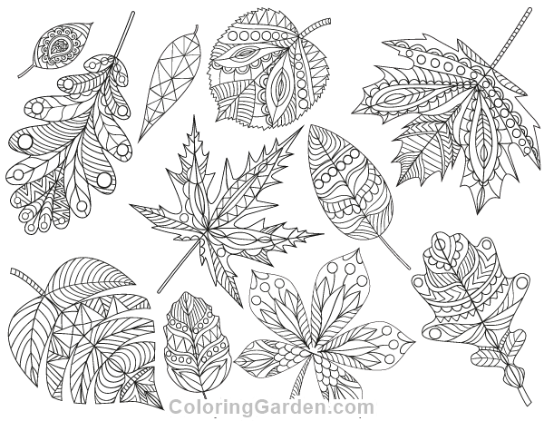 Leaves Coloring Pages For Adults