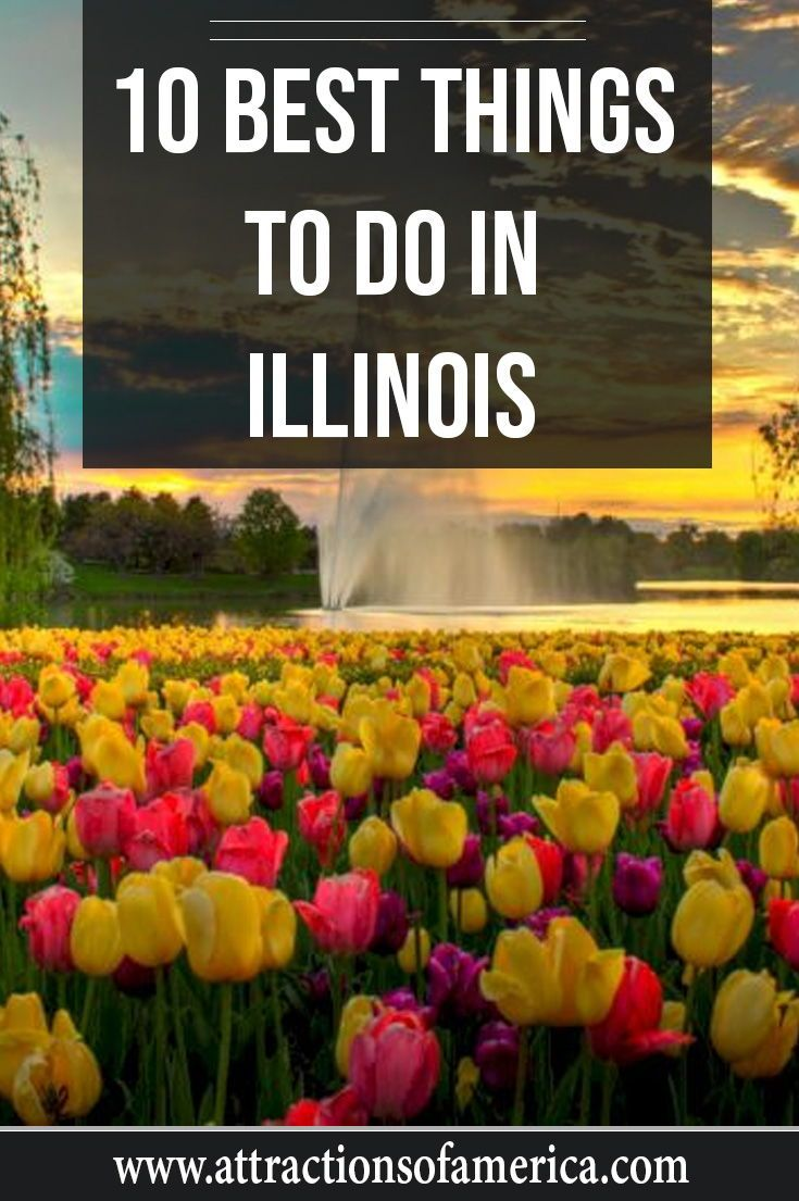 Aside from being the state with the first skyscraper, Illinois is also home to the first Ferris wheel. Whether you are looking to see the Windy City or check out other places in the Prairie State, here are the top 10 best things to do..