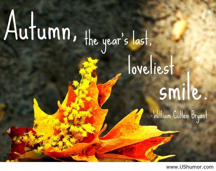 Autumn Quotes The Last Smile  Autumn Quotes  Random  Pinterest