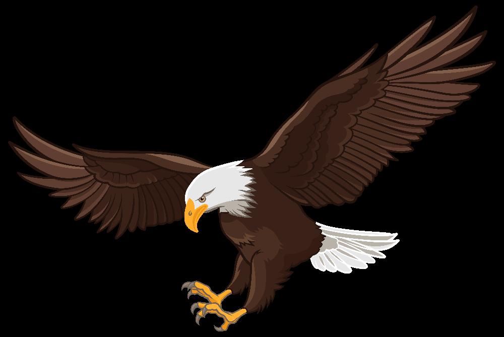 Free Eagle Png Download 20 Png Images On Yokoent Clipart 2019 Burung Rajawali Gambar Burung Gambar