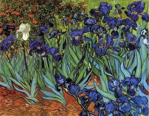 """Via """"Life and art"""" Irises by Vincent van Gogh 1889 - Getty Museum, Los Angeles, California, USA .."""