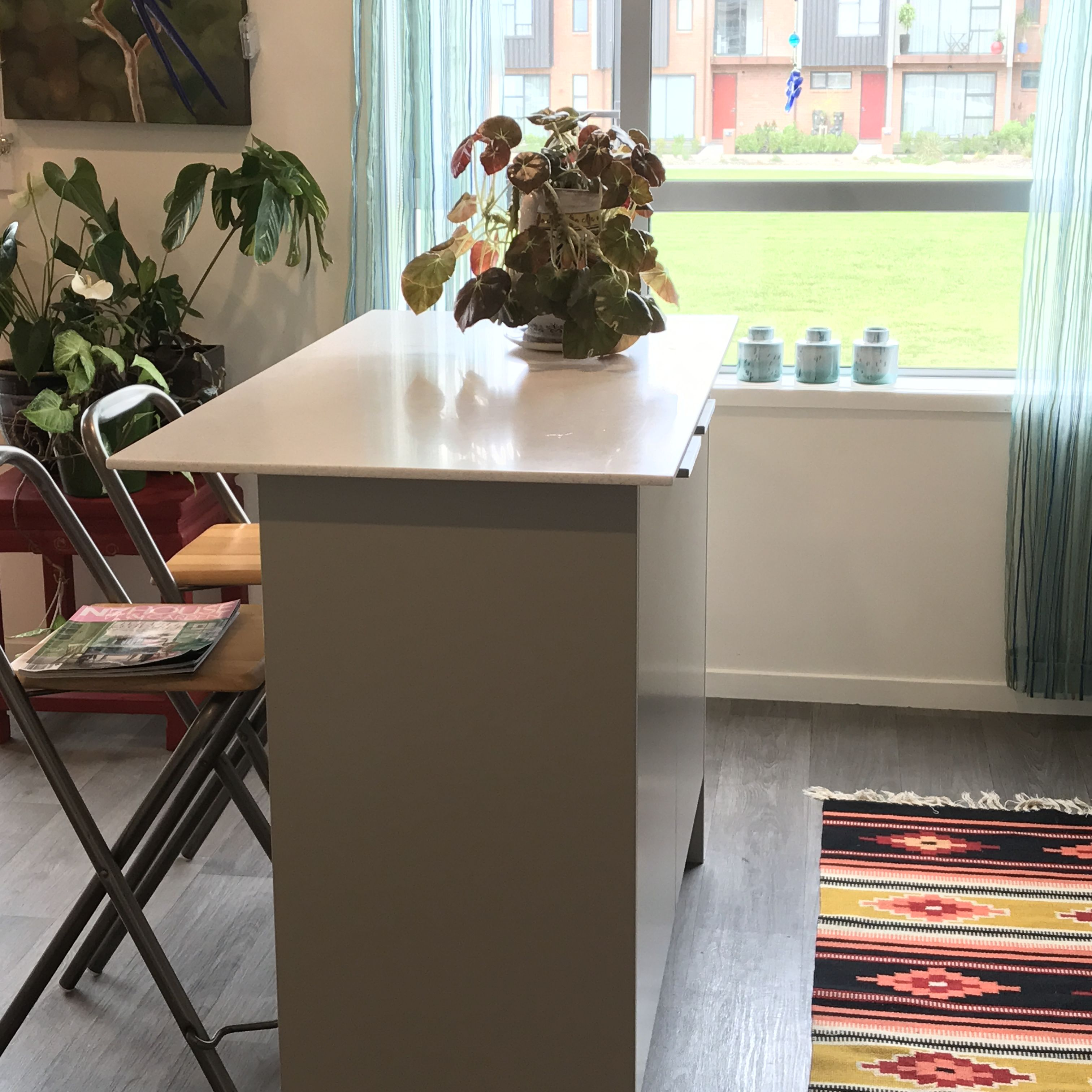 The apartment kitchen with the addition of plants colorful rugof