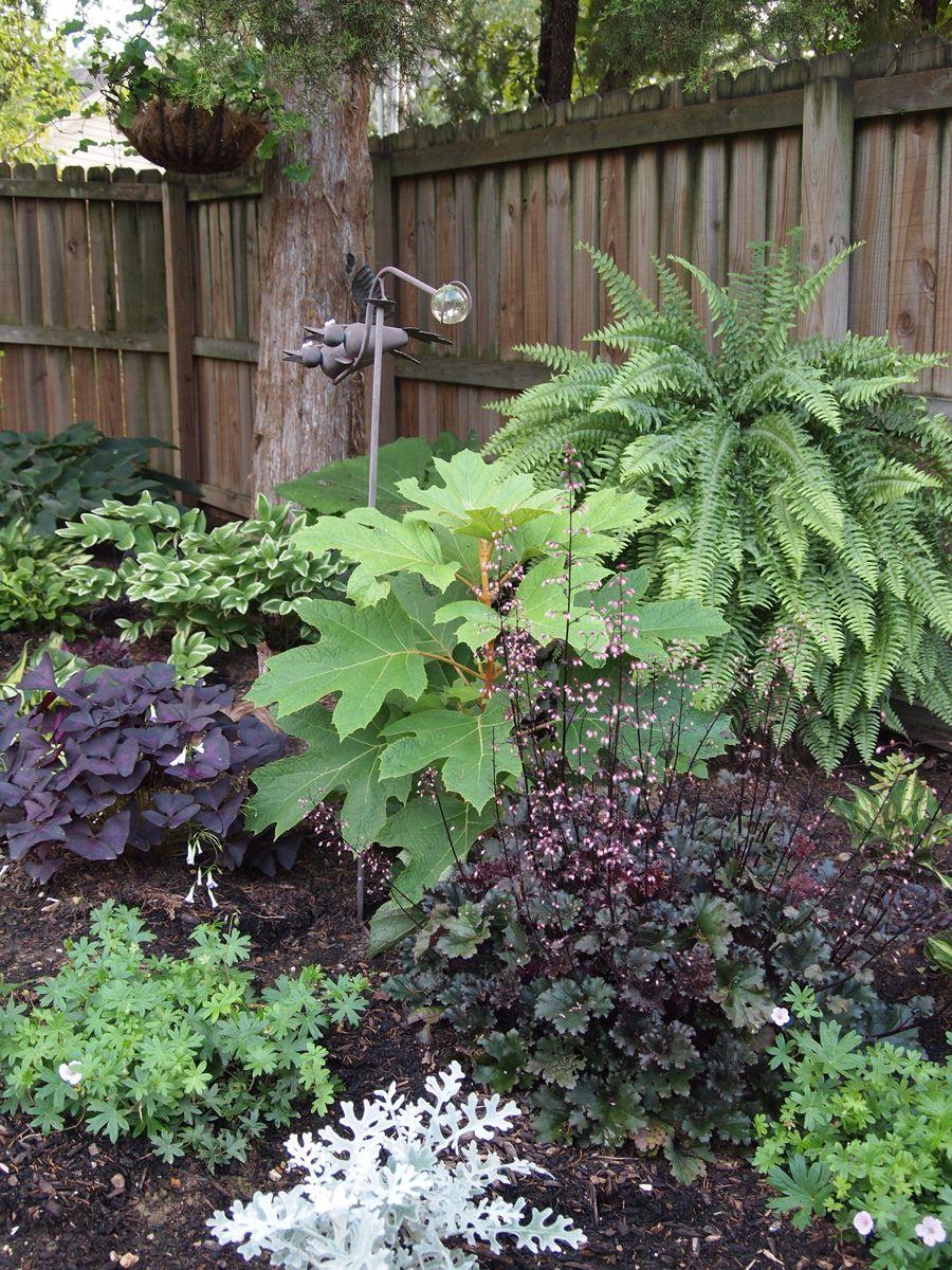 sue's garden in arkansas small