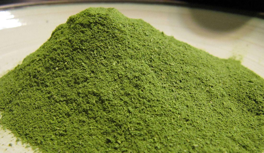 Polvo verde de moringa