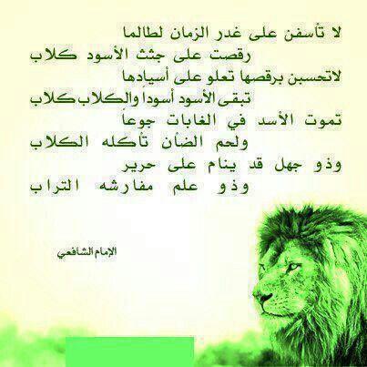 لا تأسفن على غدر الزمان Words Arabic Words Quotes