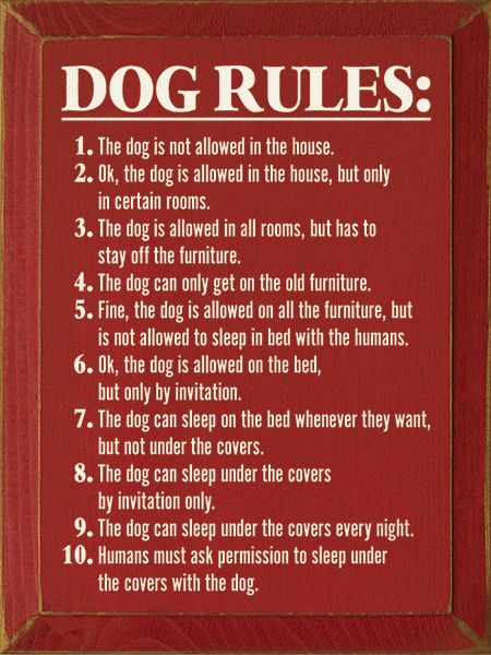 Dog Rules: 1. The dog is not allowed in the house | Dog rules ...