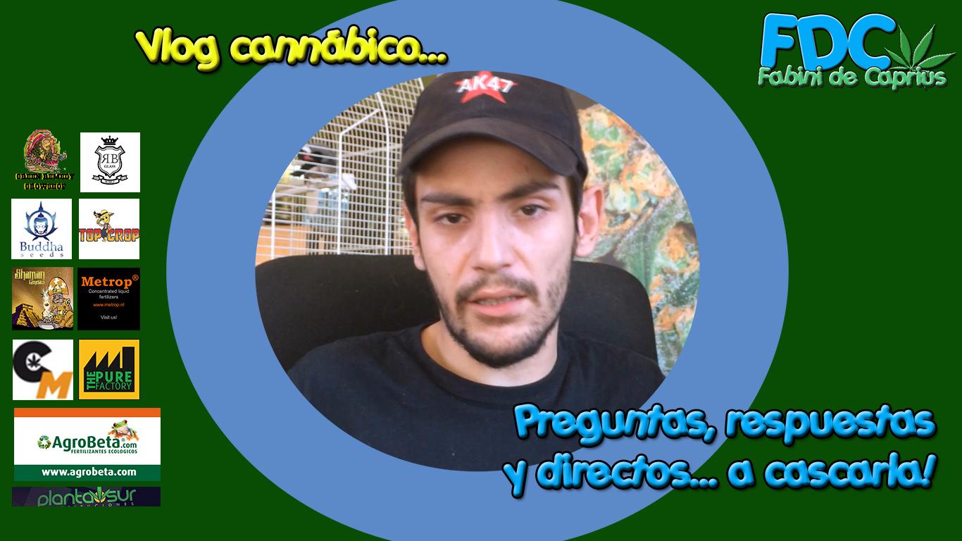 Vlog cannabico| Vuestros vídeos y #preguntas - Domingo de #Directo