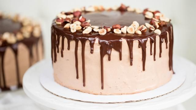 Chocolate Hazelnut Cake | Mom's Dish