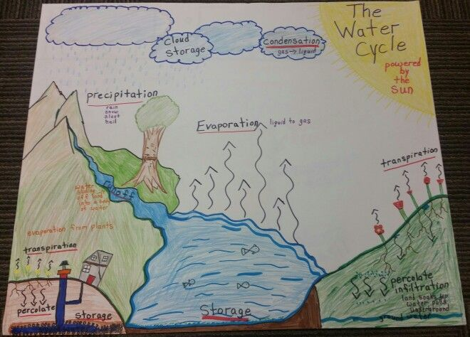 Water cycle anchor chart also science charts pinterest rh