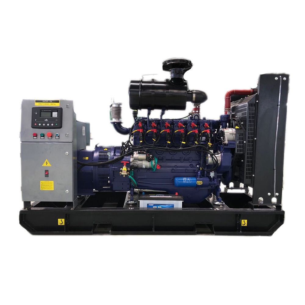 Hot Item Hot Selling Natural Gas Generator Price Gas Generator Natural Gas Generator Gas Powered Generator