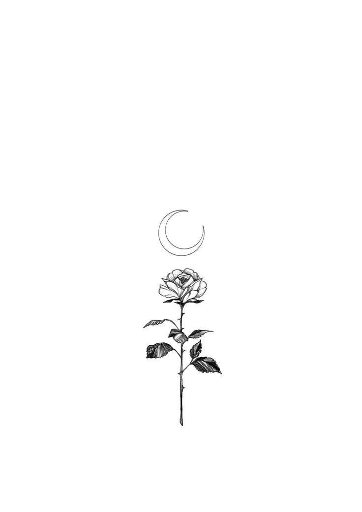 Gleiche Idee, aber Lotusblume mit Mond? - Zeynep Alptkin Karaalp - # aber # Alptk ... #tatt ....