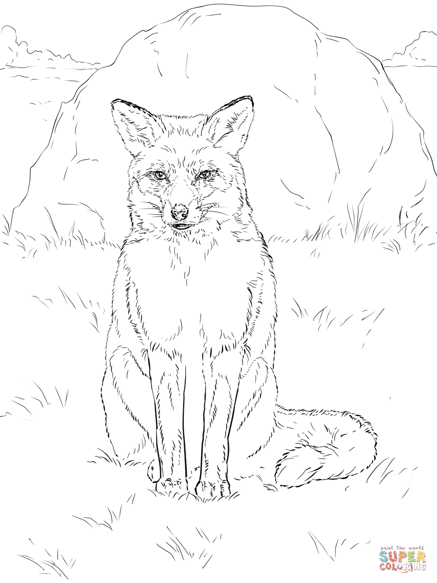 Sitting Red Fox Coloring Page Free Printable Coloring Pages Fox Coloring Page Horse Coloring Pages Animal Coloring Pages