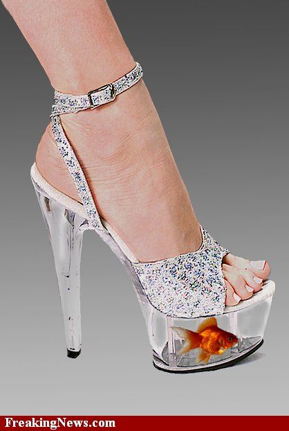 7e462f6d565 Glass shoes with goldfish bowl. Could you wear these