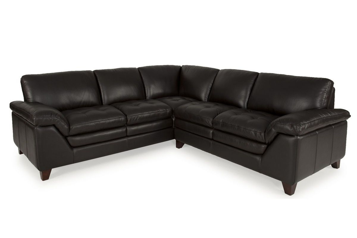 Brazil Leather 2 Piece Sectional