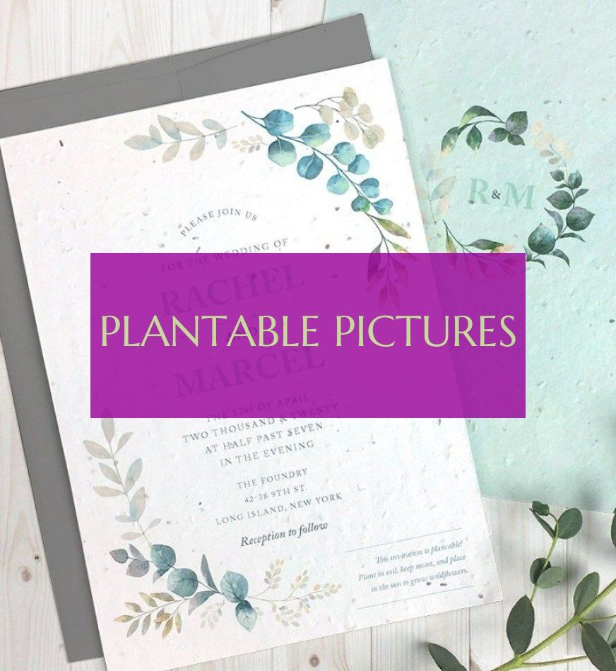 plantable pictures