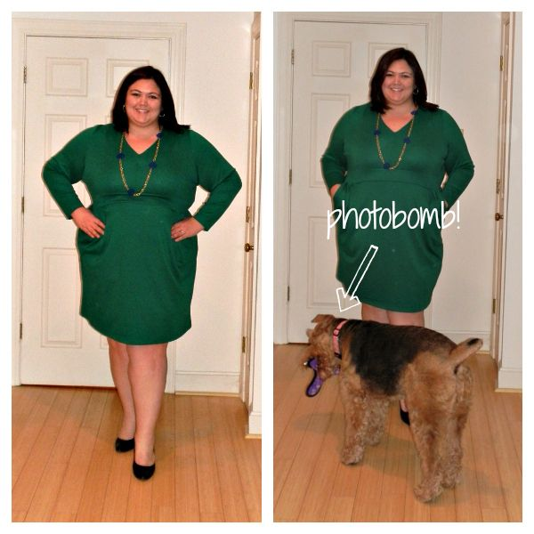3fc6f0dff11  Emily Sandford rocks the Lands End Plus Size Ponte Dress from Gwynnie Bee  - http