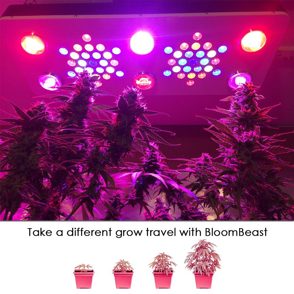 Bloombeast Led Grow Light Full Spectrum 3 Dimmers 100w Cob C850 For Hydroponic Indoor Plants Veg And Bloom 850w C850 Click Hydroponic Gardening Grow Lights