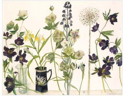 Elizabeth Blackadder (British, born 1931). Hellebores and other flowers.