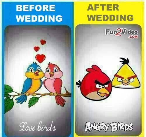 Most Hilarious Indian Wedding Memes That Went Viral Before And After Marriage After Marriage Marriage Jokes