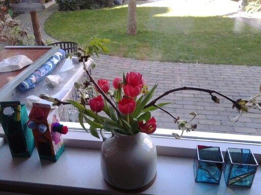 Tulp met kastanje takken die aan het bloeien is