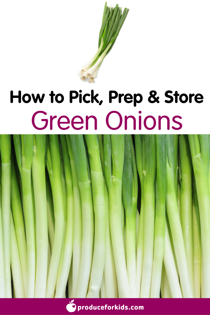 How to Pick, Prep & Store Green Onions + nutrition information, recipes, fun facts and more!