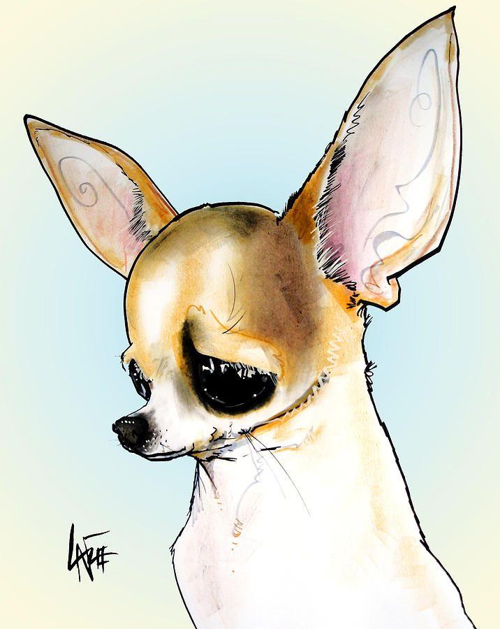 Картинки, смешные рисунки чихуахуа