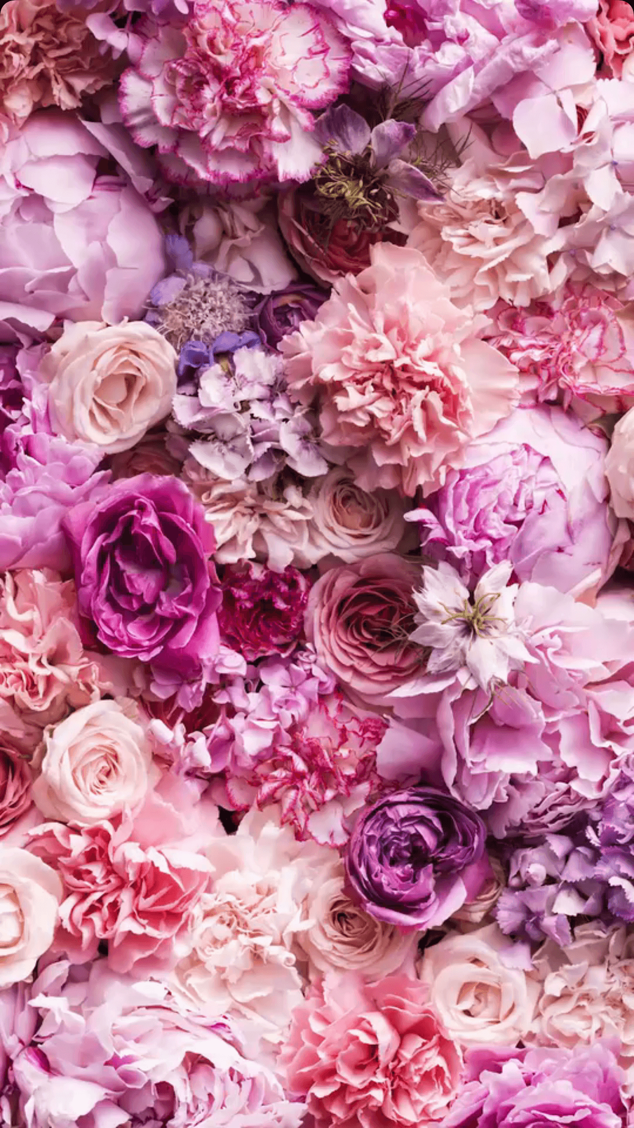 flower wallpaper vintage #flower #wallpaper - flower ...