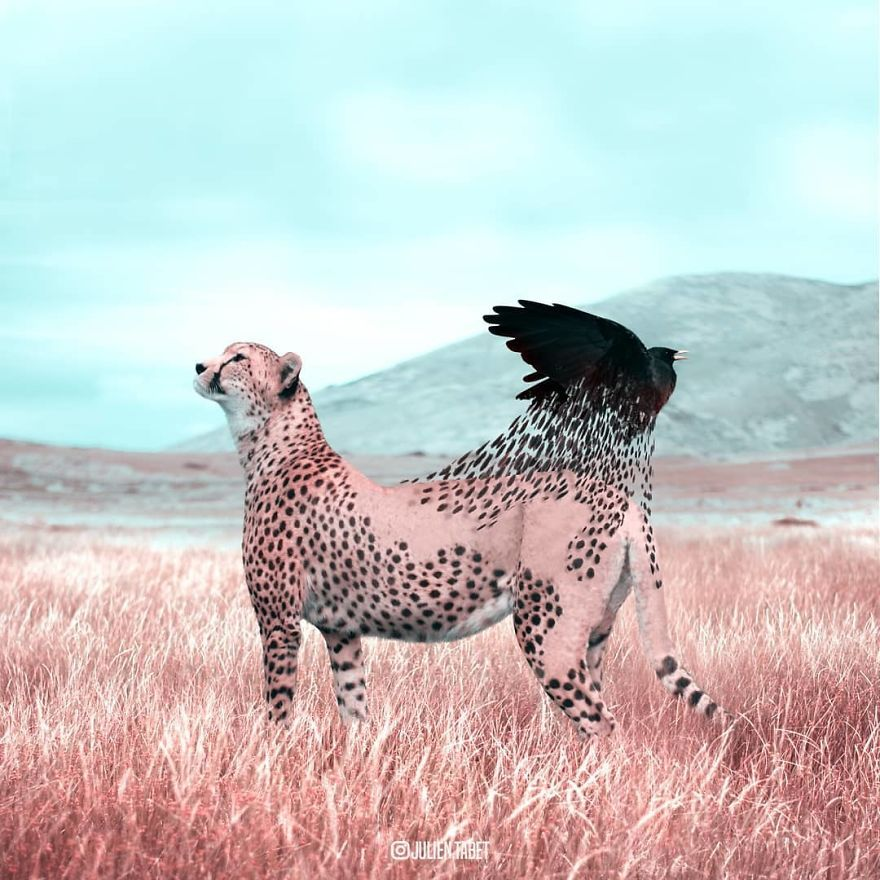 French Artist Cleverly Uses Photoshop To Create Fantastical