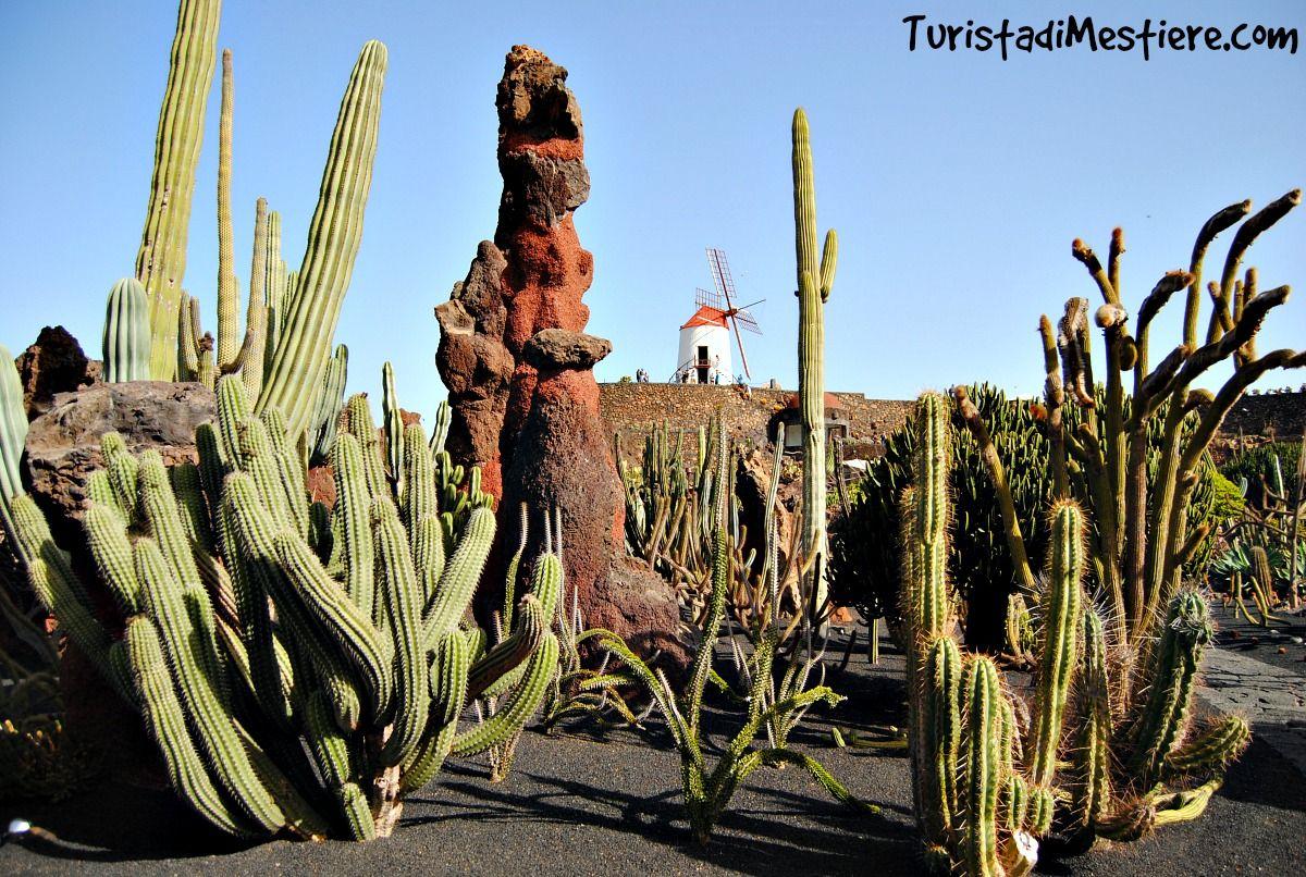 Direzione Nord Est Jardin De Cactus Mirador Del Rio Casa