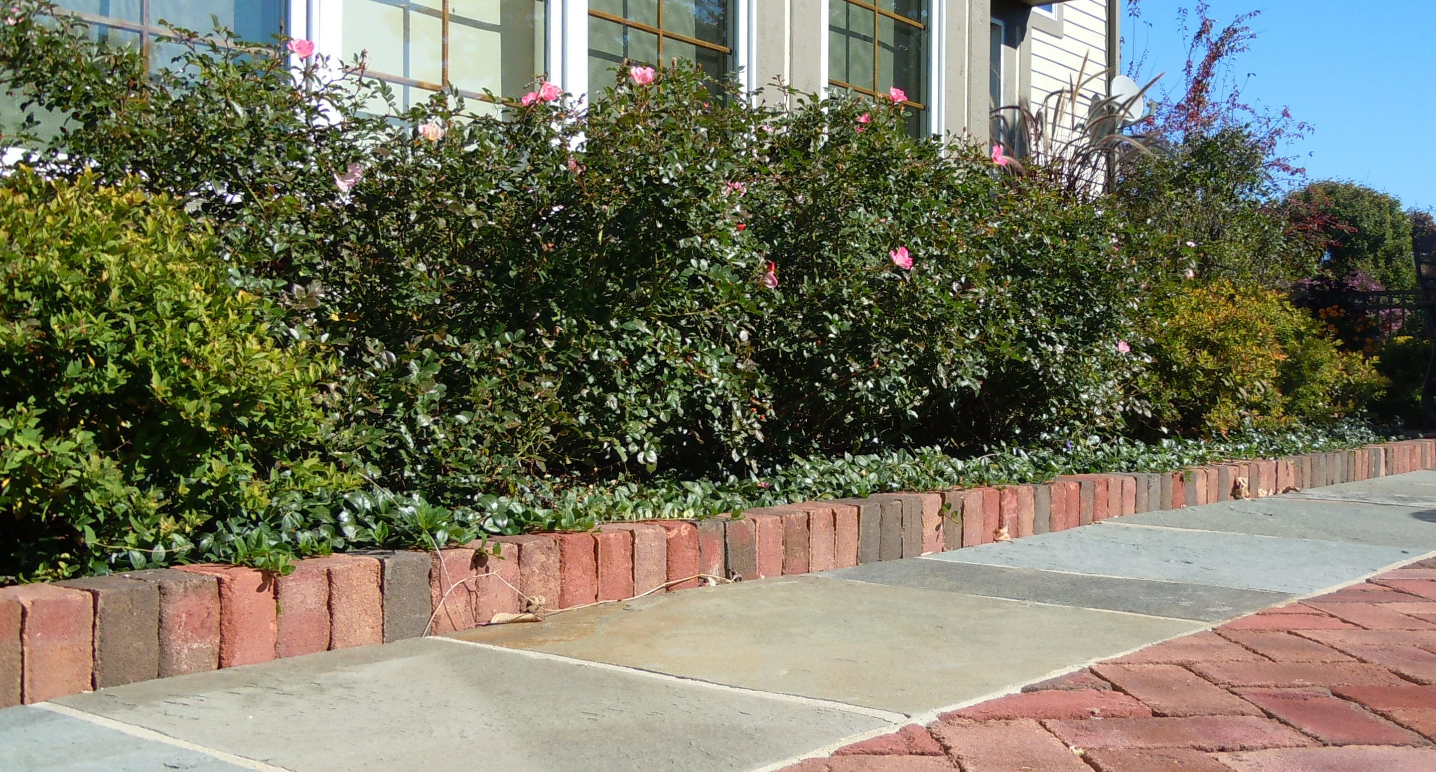 Soldier Course Of Brick Edging Along A Brick Patio Edged In