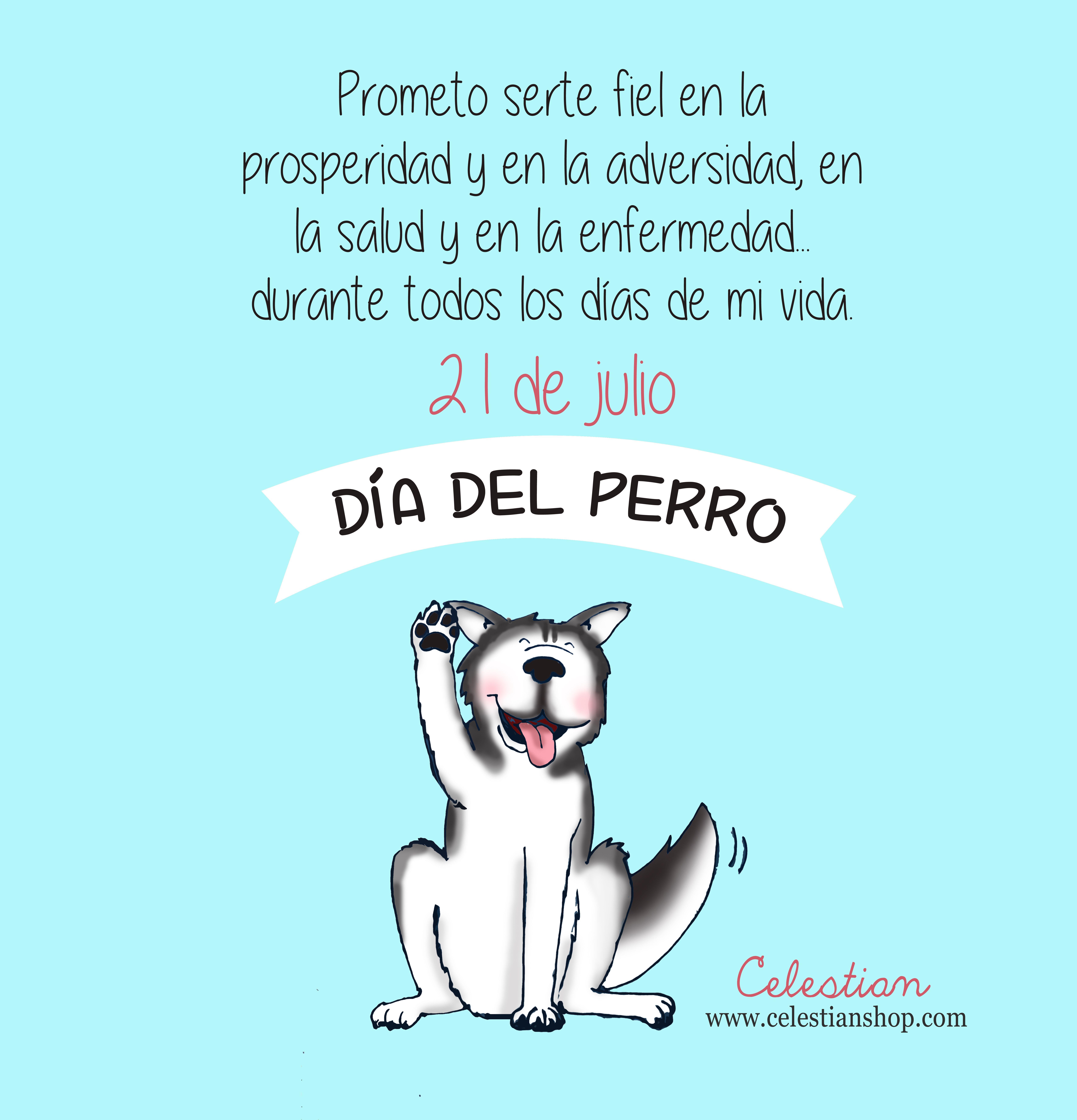 Día Mundial Del Perro Dog Díamundialdelperro Www