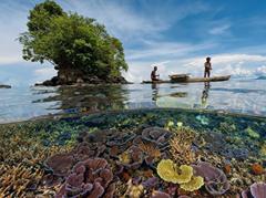 De Namibische woestijn grenst aan de kust van de zuidelijke Atlantische Oceaan, de zogenaamde 'geraamtekust', vanwege de vele schipbreukelingen die er omkwamen van honger en dorst. Maar tegenwoordig kun je op de 300 meter hoge duinen sporten, met sandboards en parapentes. Tuamoto in Frans-Polynesië. Op de atol Fakarava proberen ze de toeristische ontwikkeling binnen de perken te houden om het ecosysteem van deze schitterende koraaltuin te bewaren. Planeet Kuifje