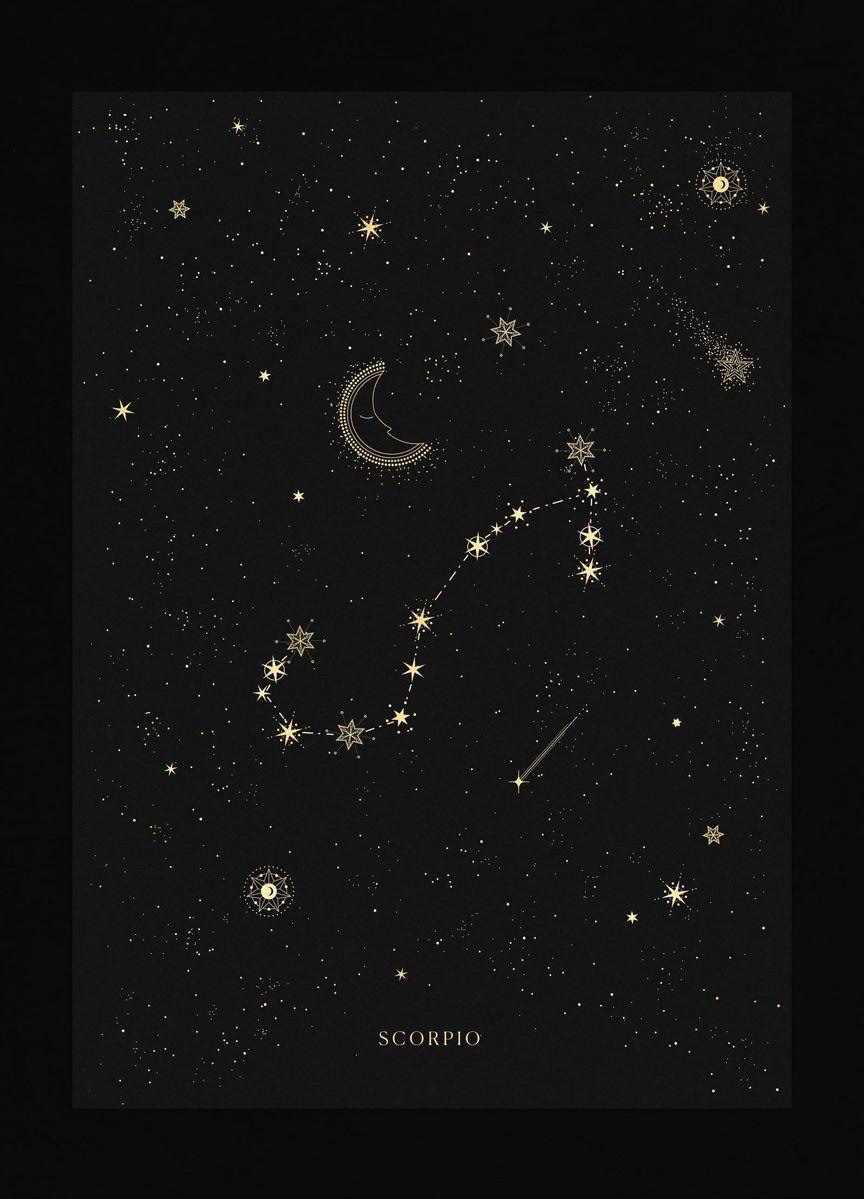 Scorpio Constellation En 2020 Signe Astrologique Cancer Signe