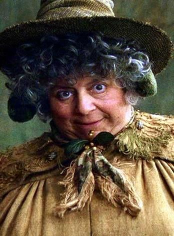 Professor Pomona Sprout B 15 May 1931 Or 1941 Was A Witch Who