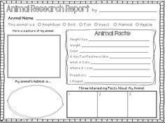 Animal Report Template | Making Lemonade In Second Grade: Animal  Diorama Rama And A Amazing Design