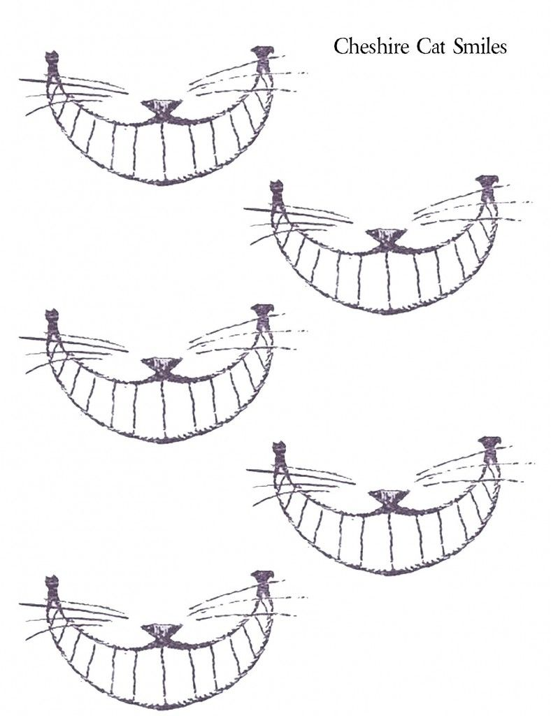 For mad hatter tea party Cheshire Cat Smiles-put on A stick so every ...