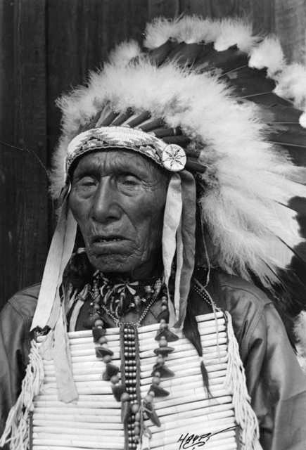 Image result for Black Elk