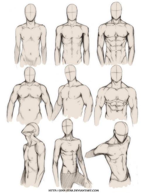 Male torso - drawing reference | Dibujo | Pinterest | Male torso ...