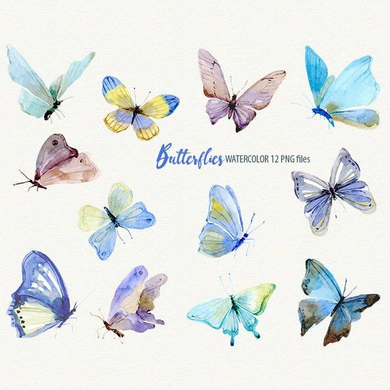 Butterflies Clipart Watercolor Butterfly Etsy Butterfly Clip Art Butterfly Watercolor Butterfly Drawing