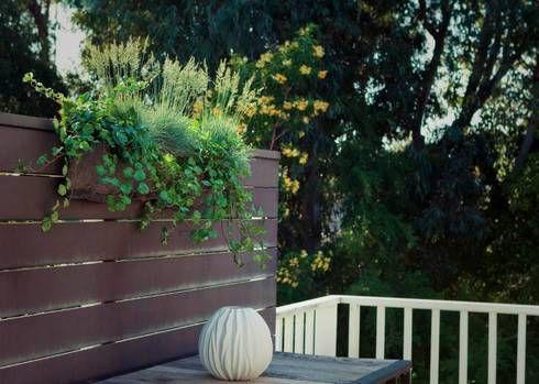 Good FloVert. Living Wall PlanterWall PlantersHanging PlantersLiving WallsBright  GreenHerb ...