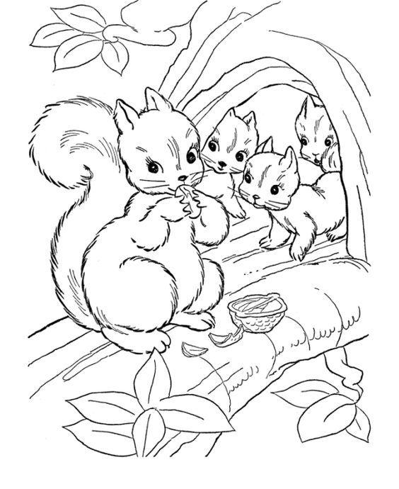 ausmalbilder für kinder eichhornchen 4 in 2020  herbst